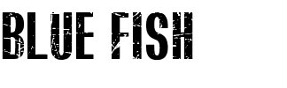 BLUEFISH BLACK SCRATCHED font